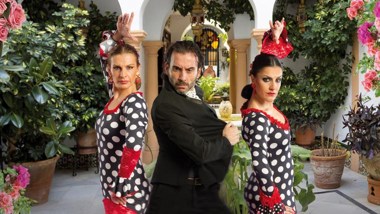 2019 Arte Flamenco