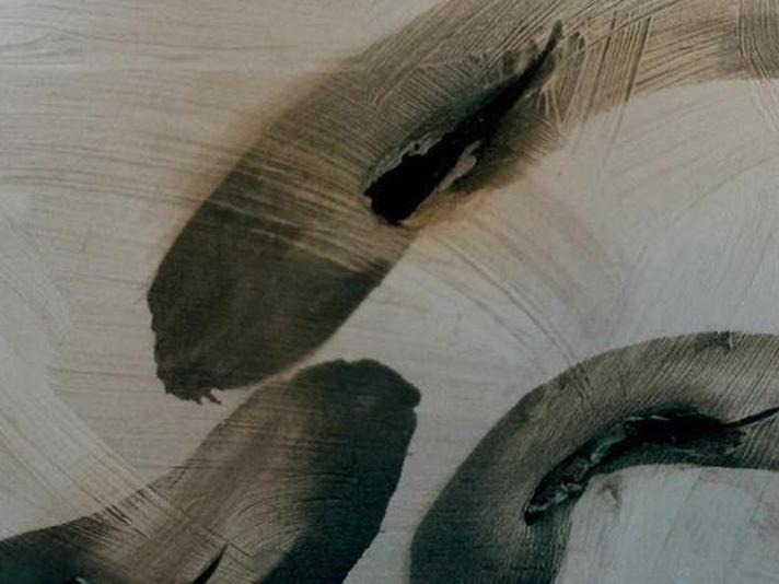 imatge-conferencia-Desclot-Dudamel