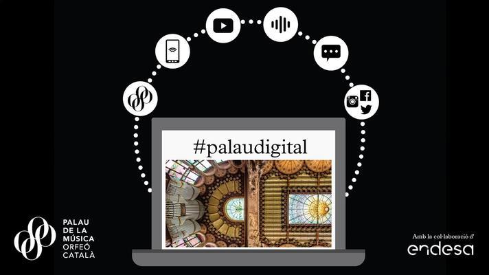 Infografia Palau Digital