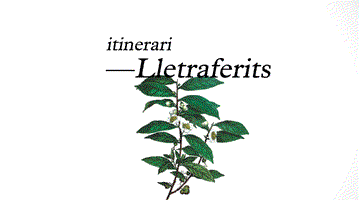 Itinerari Lletraferits