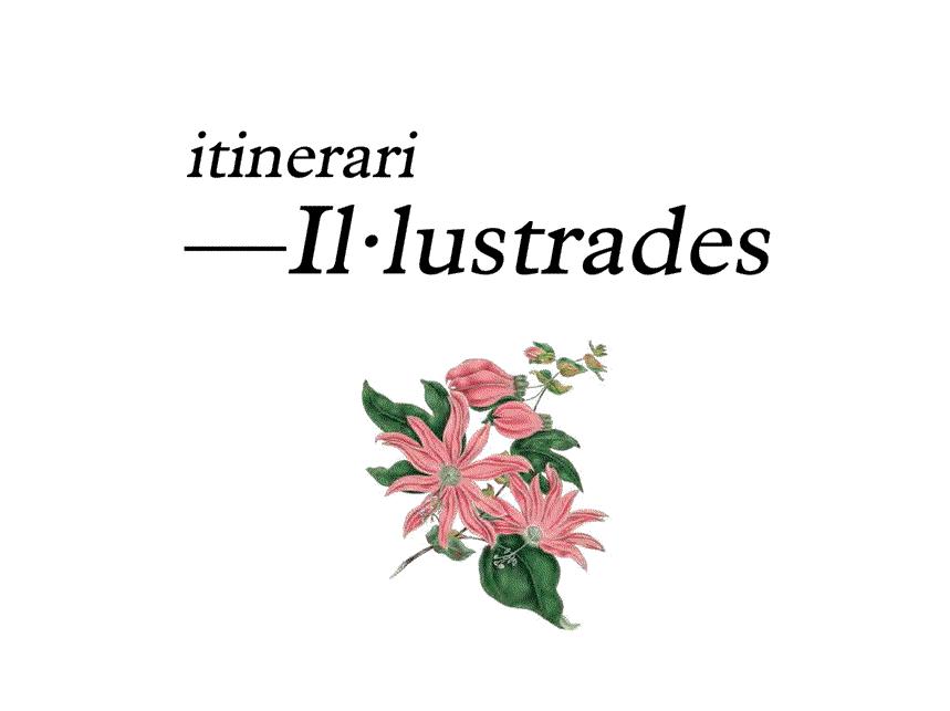 itinerari Il·lustrades