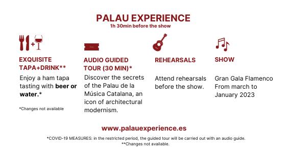 ING Palau Experience WEB